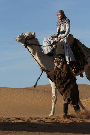 מלכת המדבר