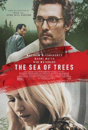 ים של עצים